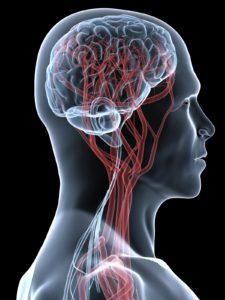МРТ сосудов шеи в киеве