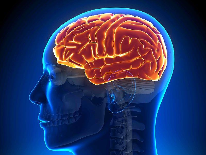 МРТ головного мозку Київ